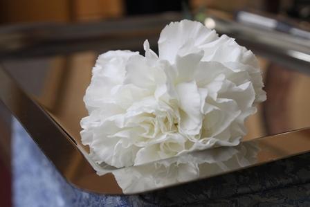 多磨葬祭場行華殿:献花