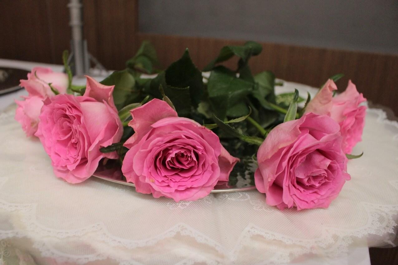 多磨葬祭場:献花の薔薇